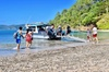 Afternoon Cruise & Island Tour - Scenic Cruise, Hike, Snorkel, Wild...