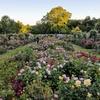 Brooklyn Botanic Garden - Any Date Through October 31, 2018