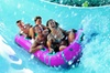 SeaWorld Parks and Entertainment - Hampton Roads: Water Country USA