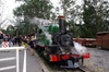 Puffing Billy Train With Optional Penguin Parade or Melbourne City ...