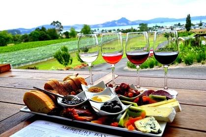 Best Wine Tasting Tour Niagara Falls USA Side