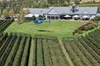 Frogmore Creek Winery Helicopter Tour