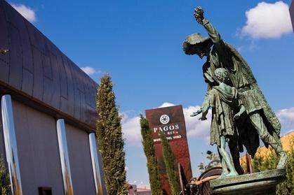 Visita guiada al Museo del Vino Pagos del Rey Oferta en Groupon