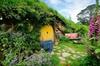 Tauranga Shore Excursion: Lord of the Rings Hobbiton Movie Set Tour
