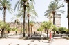 Escapada de un día completo a Córdoba con entrada a la Mezquita dir...