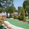 $15 For A Mini Golf Package For 4 (Reg. $30)