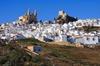 Pueblos blancos: excursión guiada semiprivada desde Sevilla