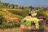 Tour di mezza giornata del vino del Chianti da Firenze