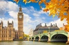 London Top Sights Small Group Half-Day Walking Tour