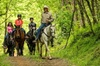 3.5 mi. Horseback Trail Ride