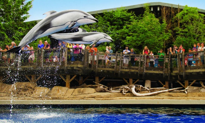Stanley Park and Aquarium Field Trip Lesson Plan for 6th - 7th Grade | Lesson PlanetHow It Works· Single Sign-on· Professional Development· Engaging Curriculum.