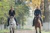 Giro a cavallo e degustazione di vini con pranzo in Toscana