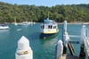 Sydney's Northern Beaches with a River Cruise to Secluded Beaches |...