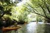Paddle with the Platypus Twilight Kayak Adventure