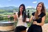Tour enologico con degustazione dell'Amarone, con 3 vini e snack