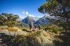 Full-Day Routeburn Track Key Summit Guided Walk from Te Anau