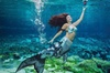 Weeki Wachee Springs and Mermaid Encounter Day Trip with Transporta...