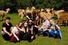 2-Hour Alpaca Farm Experience in Kenilworth