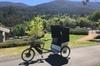 Yarra Valley Rickshaw Tours of the Warburton Trail