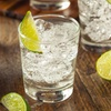 Seattle Ginfest - Thursday October 12, 2017 / 6:00pm-9:00pm