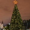 Christmas NOLA Style Walking Tour
