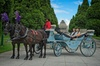 Melbourne Horse Drawn Carriage Extended Garden Tour™