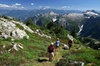 Mountain Skills Academy & Adventures - Upper Lynn: Whistler Small Group Wilderness Half-Day Hike