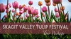 Tulip Festival Package Tour from Seattle - Fridays, Saturdays and S...