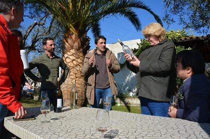 Visitez les vignobles de la côte d'Azur avec un guide œnologue expérimenté pour goûter aux vins rouges, blancs et rosés provenant de variétés de raisins endémiques uniques. Lors de cette visite de 8heures en petit groupe, vous visiterez 3domaines différ