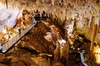 Jewel Cave Fully-guided Tour