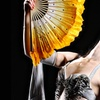 "Belly Dancing Show ""Blood on the Veil"" - Friday November 18, 2016 /..."