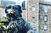 Edinburgh Private Bespoke Luxury Six Hour Tour Shore Excursion