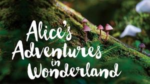 Lyric Arts Main Street Stage: Alice's Adventures in Wonderland at Lyric Arts Main Street Stage