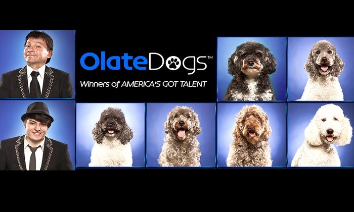 Bal Theatre - Halcyon-Foothill: The Olate Dogs at Bal Theatre