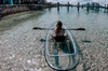 Clear Kayak Tours in Jupiter