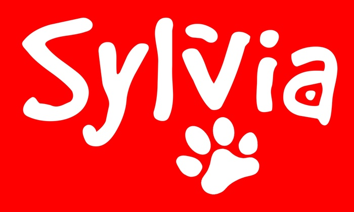 Woodinville Repertory Theatre  - Valley Industrial: Sylvia at Woodinville Repertory Theatre