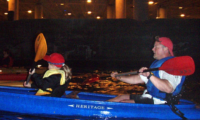 Kayak Chicago - Chicago River - Goose Island: City Lights Night Paddle