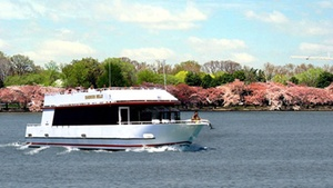 DC Cruises boat at Washington Harbor, Georgetown: Cherry Blossom and Monuments Boat Tour at DC Cruises boat at Washington Harbor, Georgetown