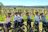 Sonoma Valley Half-Day Pedal Assist Bike or Regular Bike Tour