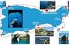 Capri: tour in barca, biglietti prioritari e Grotta Azzurra (opzion...