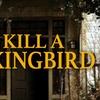 """""""To Kill a Mockingbird"""" - Sunday November 13, 2016 / 2:30pm"""