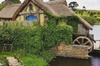 Exclusive Transfer to Hobbiton Movie Set (8 hours)