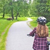 Tony Knowles Coastal Trail Scenic Bike Tour