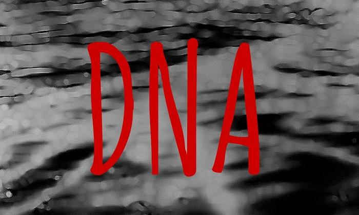Atwater Village Theatre - Atwater Village Theatre: DNA at Atwater Village Theatre