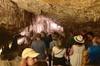 Excursión de día completo a las cuevas dels Hams y Drach con Puerto...
