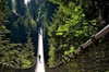 Capilano Suspension Bridge Park Entry