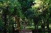 Tour fotografico di villa Borghese e altre zone eleganti con labora...