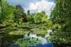 Visite guidée privée de Versailles et Giverny avec déjeuner, au dép...