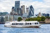 Greenwich to Westminster Sightseeing Cruise in London