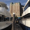 Holiday Harbor Cruise